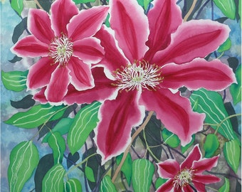 Pink Clematis Original Watercolour Botanical Painting