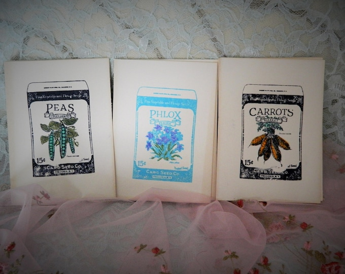 Seed Note Cards