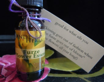 Furze/Gorse Flower Essence: Hopefull, Vibrant, Golden Radiance for Gloomy, Rainy Days/Feeling Under the Weather made in the Burren, Ireland