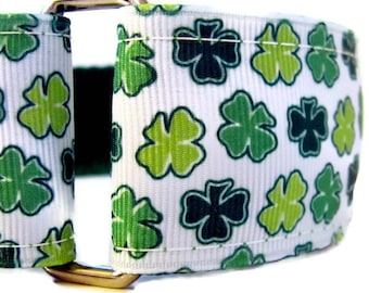 "Irish Shamrocks Dog Collar - St Patrick's Greyhound 1.5"" wide martingale or buckle collar - St. Patty's Day Collar"