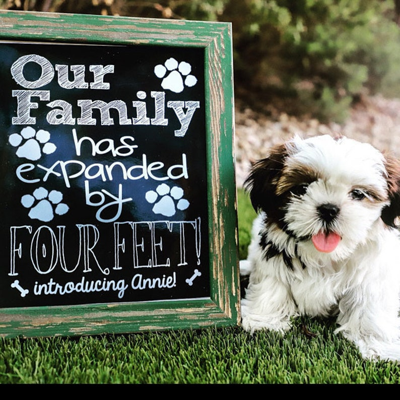 New Puppy Announcement  PERSONALIZED Our Family Has Expanded image 0