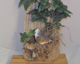 Natural Driftwood Plaque with Bird on Moss Nest