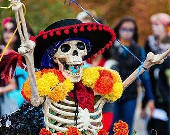 Day of the Dead Marigold - Tagetes erecta Dia de los muertes flowers, 20 seeds