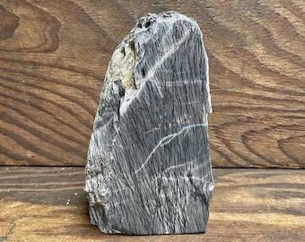 Net Jasper, Spiderweb Jasper, Web Jasper, Picasso Jasper, Picasso Stone, Gray Jasper, Freestanding Jasper, Healing Stones, Chakras