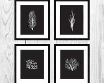 "Black Nautical Coral Printable Art for Bathrooms (Set of 4, 11x14"")"