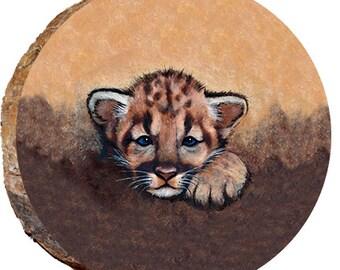 aeb4dd9712ff Peeking Cougar Cub - DAC025