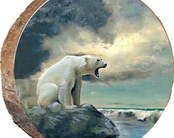 DAB045 Three Polar Bears