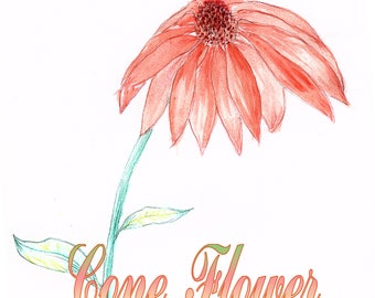 Cone Flower 9x12 print with text