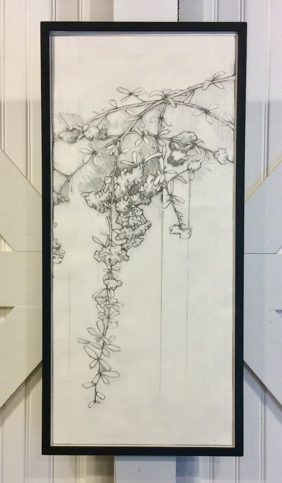Nature Drawing No 6
