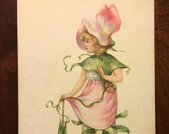 Vintage M. Dulk  Birthday Flower Fairy Postcard