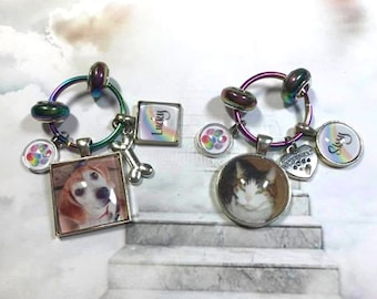 Rainbow Bridge Pet Memorial Photo Key Ring with Optional Cremation Urn and Double Sided Option