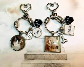 Pet Loss Key Ring with Custom Photo and Paw Print Cremation Urn Loss of Cat Dog Memory and Remains Vial Ash Container