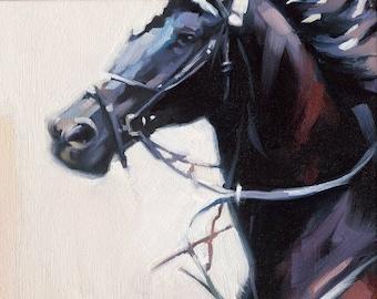 Black Horse Giclée Fine Art Print