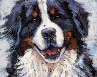 Bernese Mountain Dog Portrait Giclée Fine Art Print