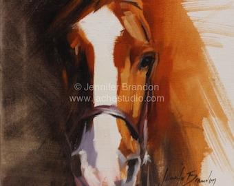 Horse Portrait - Oil Painting by Jennifer Hamby-Brandon - Jaché Studio