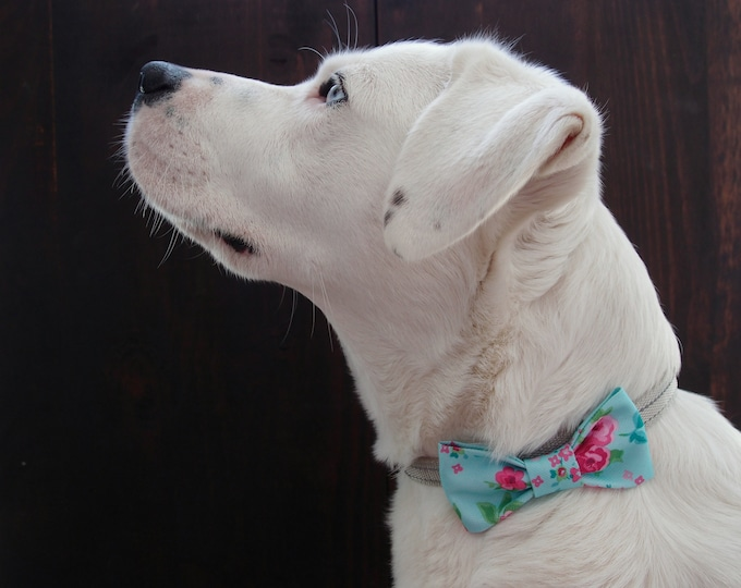 Medium size girly dog bow tie, Turquoise floral dog bowtie, wedding dog accessories, pet formal wear