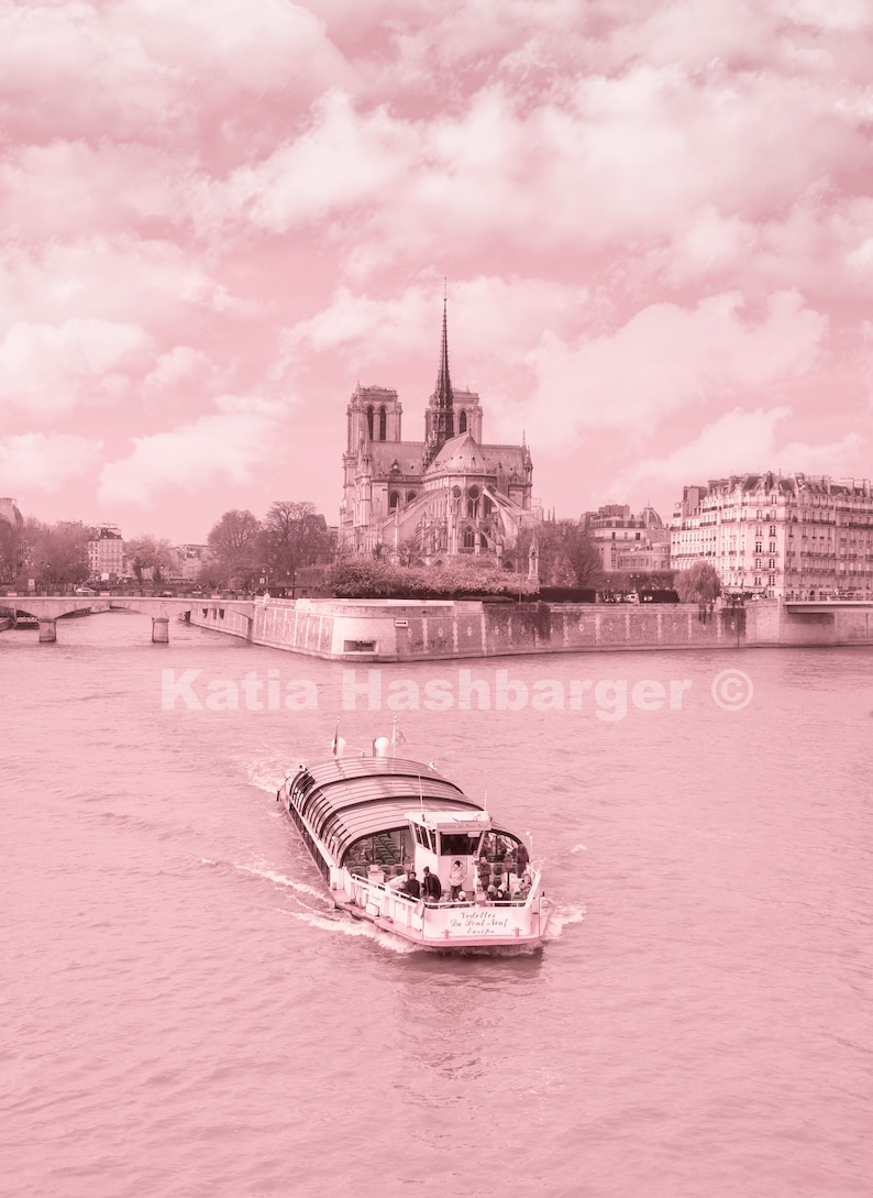 19b2cafd1c457 Paris in Pink Notre Dame Cathedral along the Seine River