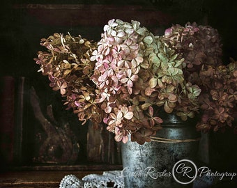 Hydrangea Bouquet, Still Life Flowers, Still Life Art, Photography Prints, Floral Still Life, Flower Photography, Photo Artistry, Flowers