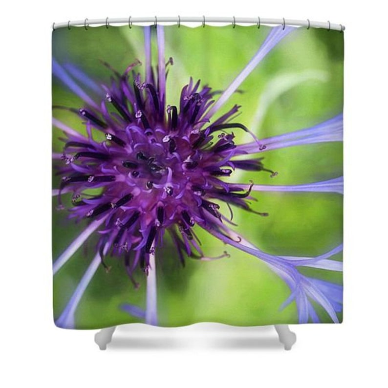 Bachelor Button Bath Shower Curtain