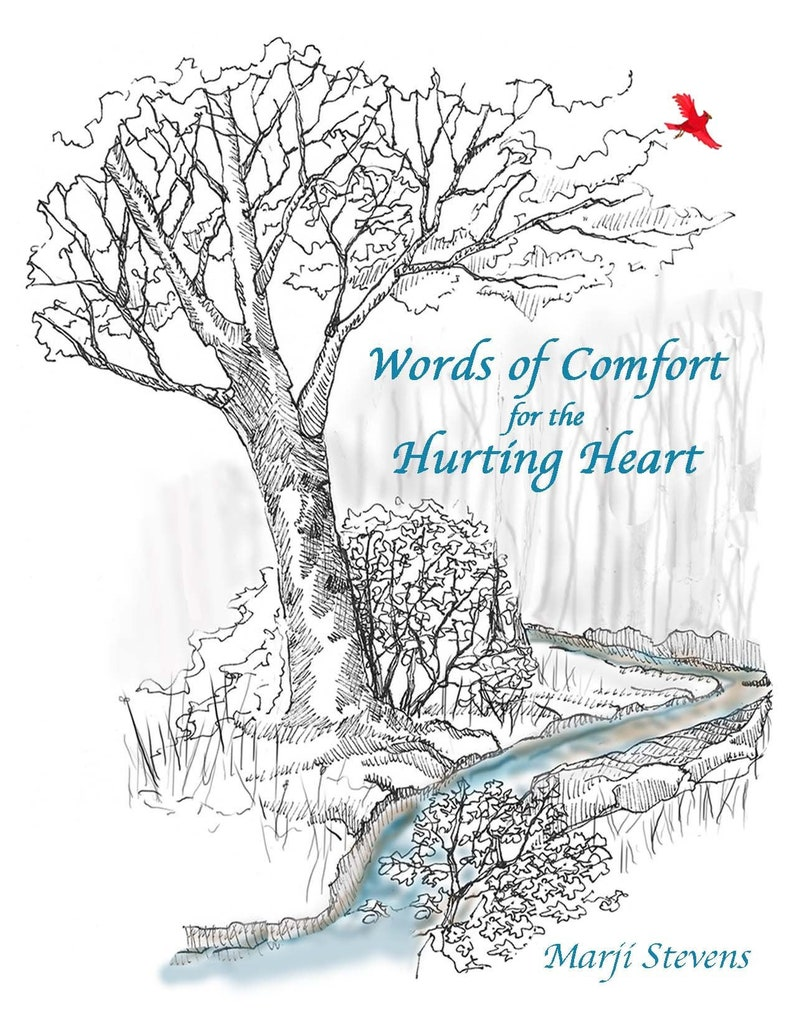 Words of Comfort for the Hurting Heart by Marji Stevens image 0