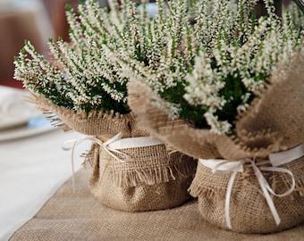 Rustic Wedding Decoration, burlap plant wrap with satin tie, wedding favor and dramatic centrepiece
