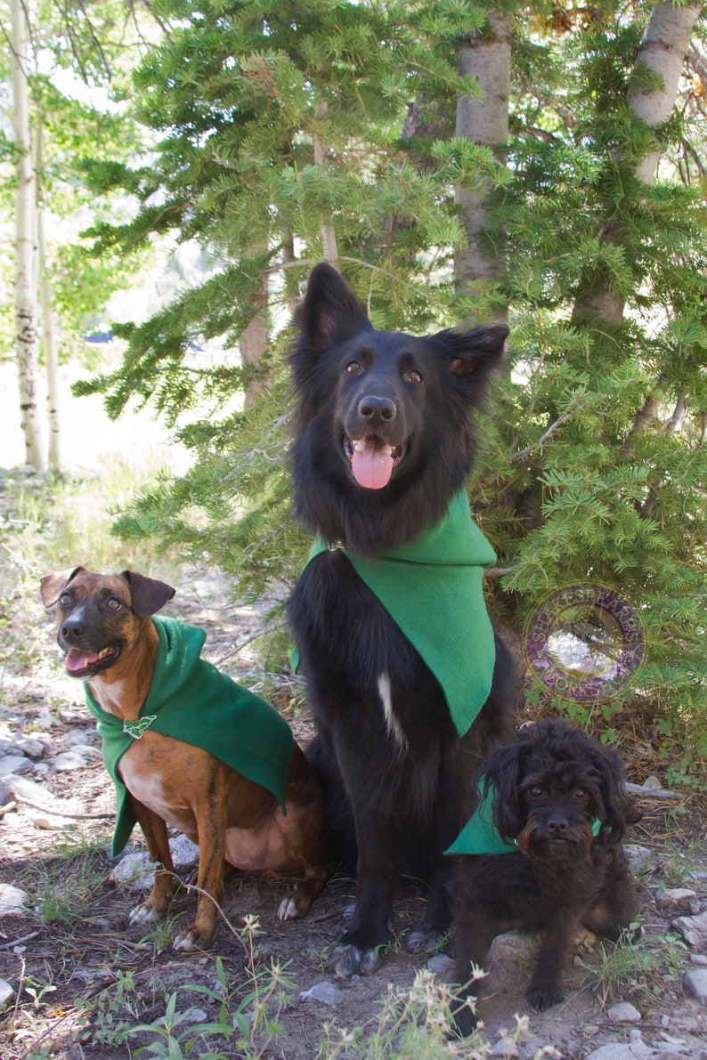 Lord of the Rings Inspired Pet Hoods and Capes. image 0