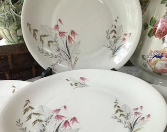 Set of 6 Royal Duchess Bavaria/Germany Dinner Plates Mountain Bell Pattern Platinum Trim
