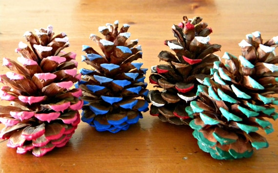 Ponderosa Pine Cone Tree Decoration Charity Fundraiser Holiday Christmas Hand Painted Aged Rainbow Ornament ECO Friendly Home Decor Gift Set