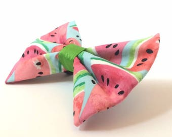 Watermelon Bow Tie - Perfect Summer Bow for dog collar