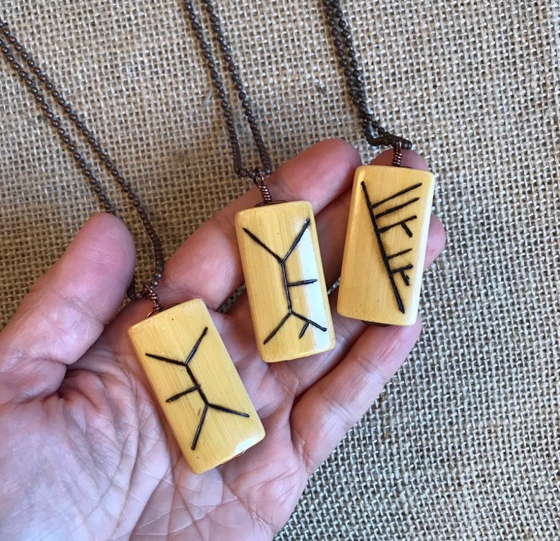 NBX04-30: Phylogenetic jewelry sciart systematics science image 0