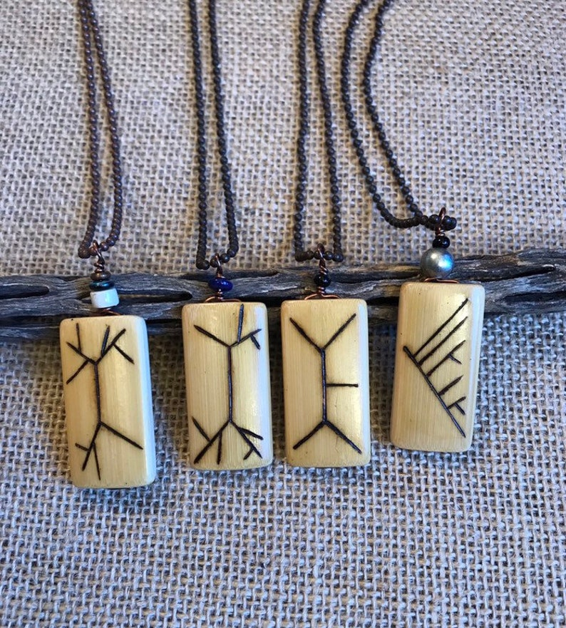 NBX04a: Phylogenetic jewelry science major  sciart image 0
