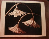 woodburn, pyrography art Trio of drooping blooms