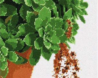 Needlepoint Kit or Canvas: Succulent Plant