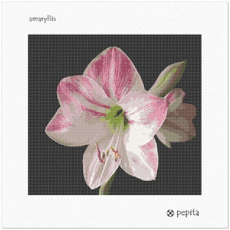 Amaryllis Needlepoint Kit or Canvas
