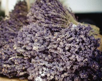 Lavender Photograph - France Photography - Fields of Provence - Saint Remy Market
