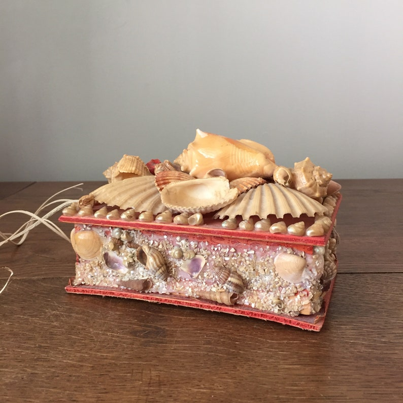 Natural Seashell Jewelry or Keepsake Box with Unique Reptile image 0