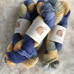 100% British Bluefaced Leicester BFL DK Weight Hand Dyed Color Shift Yarn - Betta