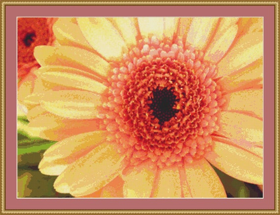 Apricot Gerbera Cross Stitch Pattern /Digital PDF Files /Instant downloadable