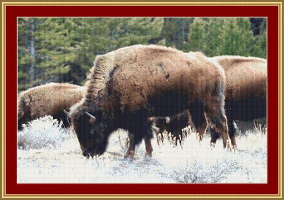 Bison Cross Stitch Pattern /Digital PDF Files /Instant downloadable