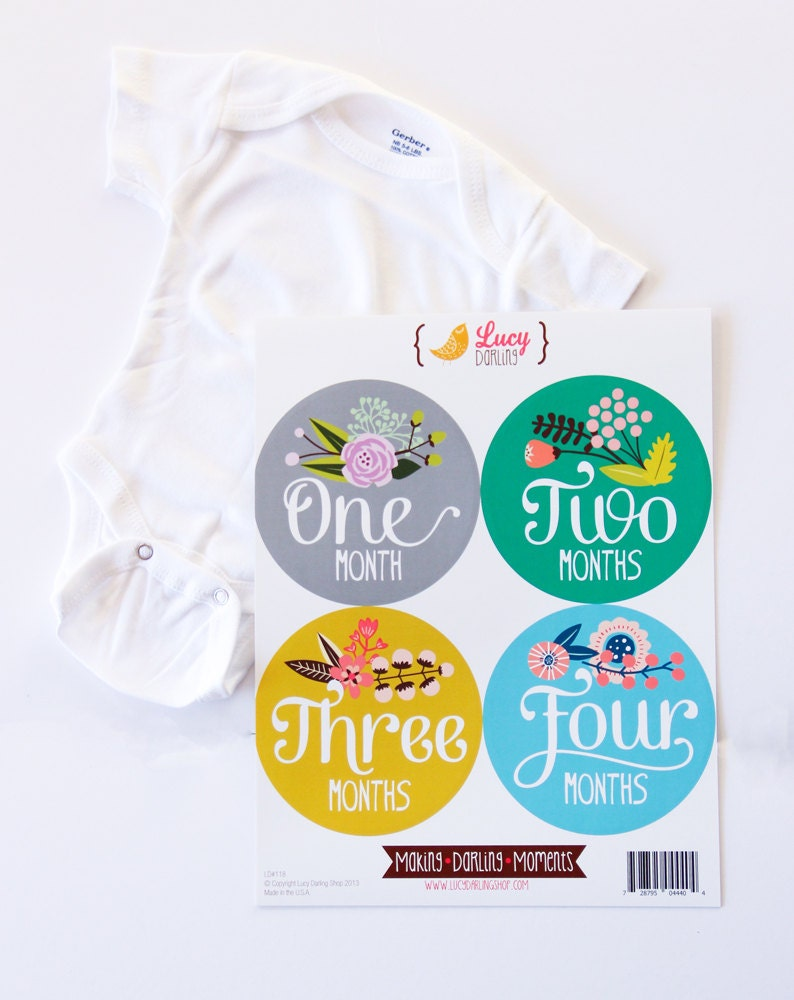 7fc2ec50f3b4 Monthly Baby Girl Gift Set Gerber 0-3 Month ONESIE Floral