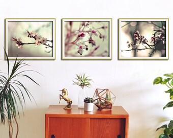 Flower Art Print, Lounge Decor, Living Room Wall Art, Set of 3 Prints, Photography Set, Nature Art Prints, Living Room Wall Decor