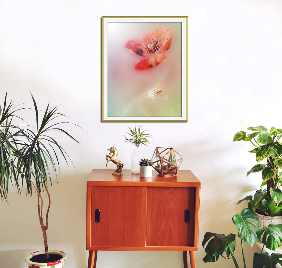 Poppy Art Coral Wall Art Pastel Coral Home Decor Red