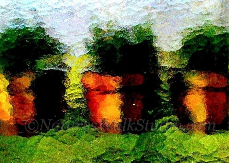 Flower Pots on Window Sill Winter Greenhouse Abstract image 0