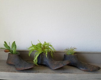 3 Antique cobbler Shoe Mold with Faux Plants Shelf Display Paperweight Door Stop  Farmhouse Industrial