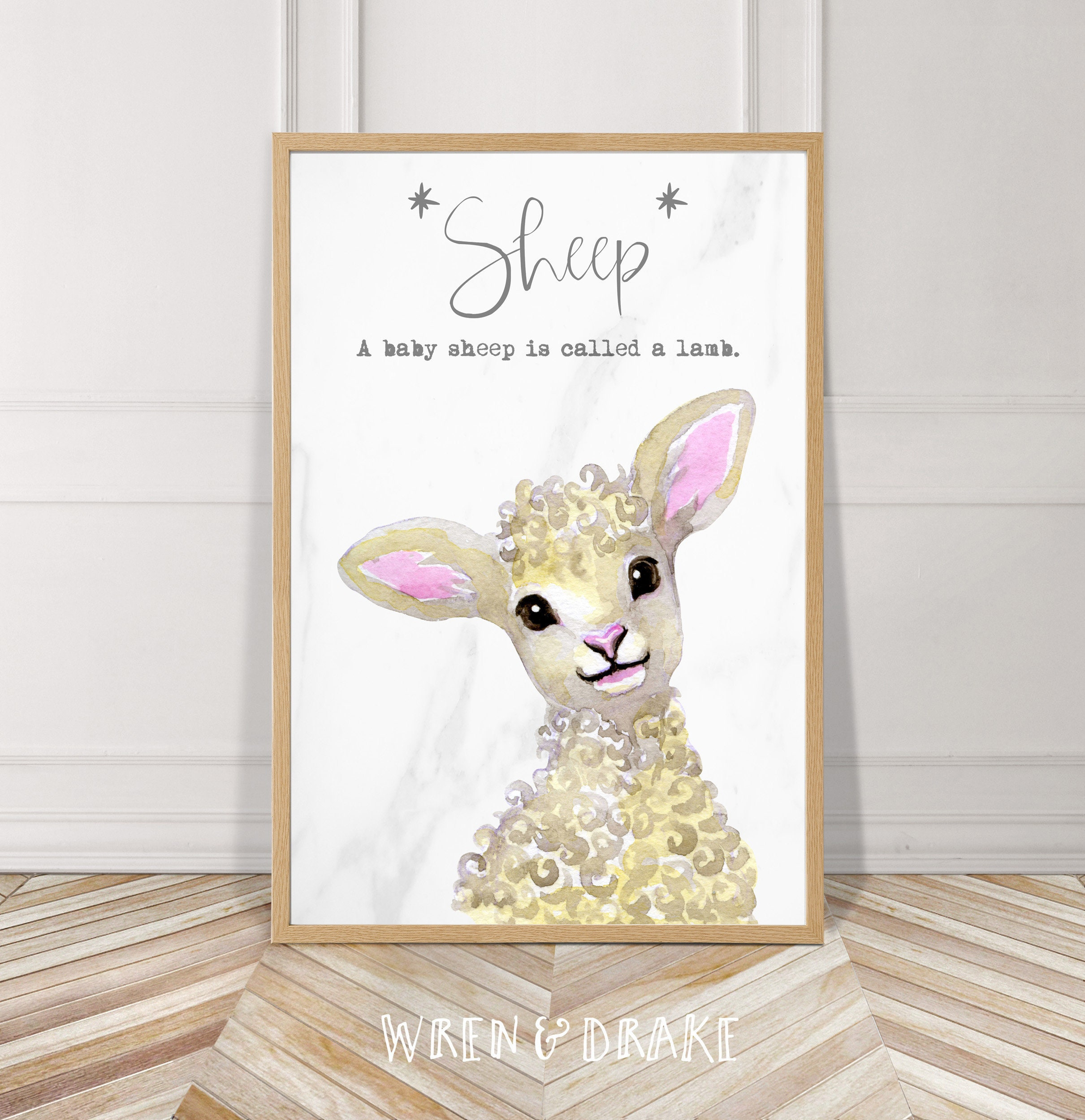 Baby Animal Series Sheep Lamb Kit Watercolor Instant