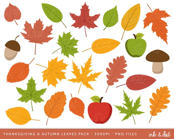 Acorn Clipart Vector Images (over 180)