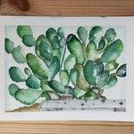 Original Botanical Watercolor Painting Modern green, wild cactus, Botanical Illustration Modern Wall Decor Minimalist Plant Small Succulent