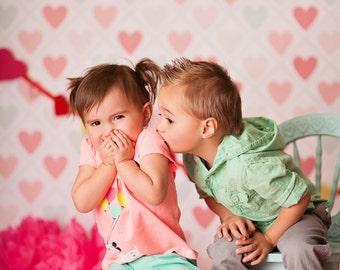 Cutie Hearts  - Vinyl Photography  Backdrop Photo Prop