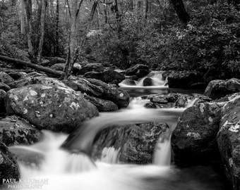 Roaring Fork, Great Smoky Mountains Tennessee Photography, Black and White, Waterfalls, Creek, Woods, Print, Wall Art, Wall Decor, Fine Art,