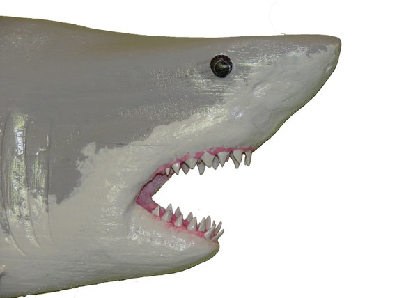 JAWS Hand Carved Great White Mako Shark Wall Mount Chainsaw Sculpture Tiger  Hammerhead Signed Original Wildlife Artist Brad Martin Wall Art